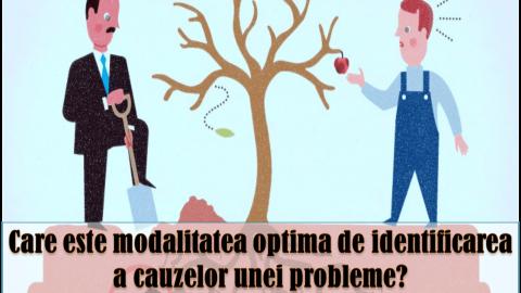 ANALIZA CAUZEI PRIMARE (RCA) – instrument de rezolvare a problemelor