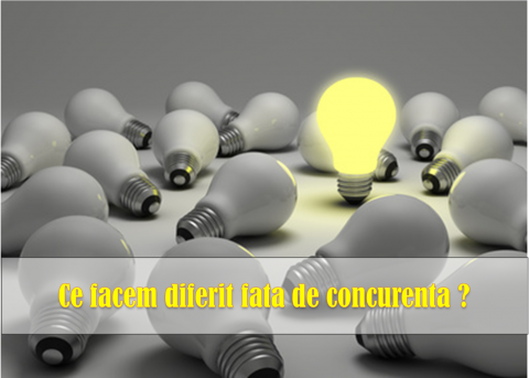 ANALIZA COMPETENTELOR DE BAZA – realizarea unui avantaj competitiv sustenabil