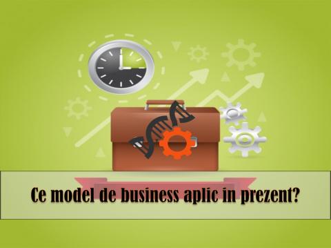MODELUL CANVAS – intelegerea factorilor care determina succesul companiei