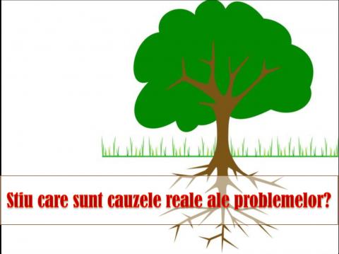 ANALIZA CAUZA – EFECT – identificarea cauzelor probabile ale problemelor
