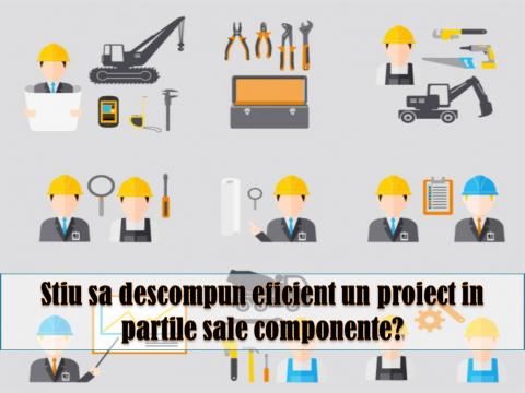 STRUCTURA DEFALCATA A ACTIVITATILOR – organizarea activitatilor intr-un proiect