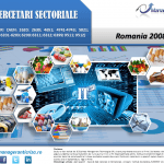 cercetare sector IT; evolutie sector IT; profitabilitate sector IT; indicatori financiari sector IT
