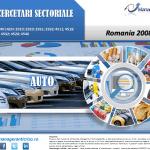cercetare sector auto; evolutie sector auto; profitabilitate sector auto; indicatori financiari sector auto