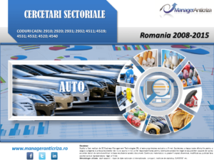 cercetare sector auto; evolutie sector auto; profitabilitate sector auto; indicatori financiari sector auto