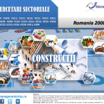 cercetare sector constructii; evolutie sector constructii; profitabilitate sector constructii; indicatori financiari sector constructii