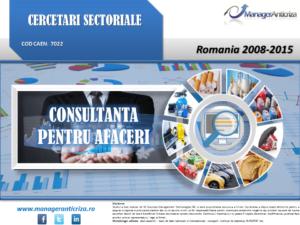 cercetare sector consultanta afaceri; evolutie sector consultanta afaceri; profitabilitate sector consultanta afaceri; indicatori financiari sector consultanta afaceri