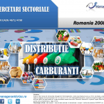 cercetare sector distributie carburanti; evolutie sector distributie carburanti; profitabilitate sector distributie carburanti; indicatori financiari distributie carburanti