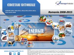 Sectorul energie - prezentare rezumativa