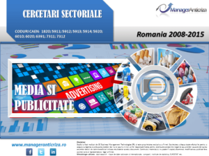 cercetare sector media publicitate; evolutie sector media publicitate; profitabilitate sector media publicitate; indicatori financiari sector media publicitate