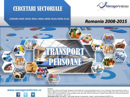 cercetare sector transport persoane; evolutie sector transport persoane; profitabilitate sector transport persoane; indicatori financiari sector transport persoane