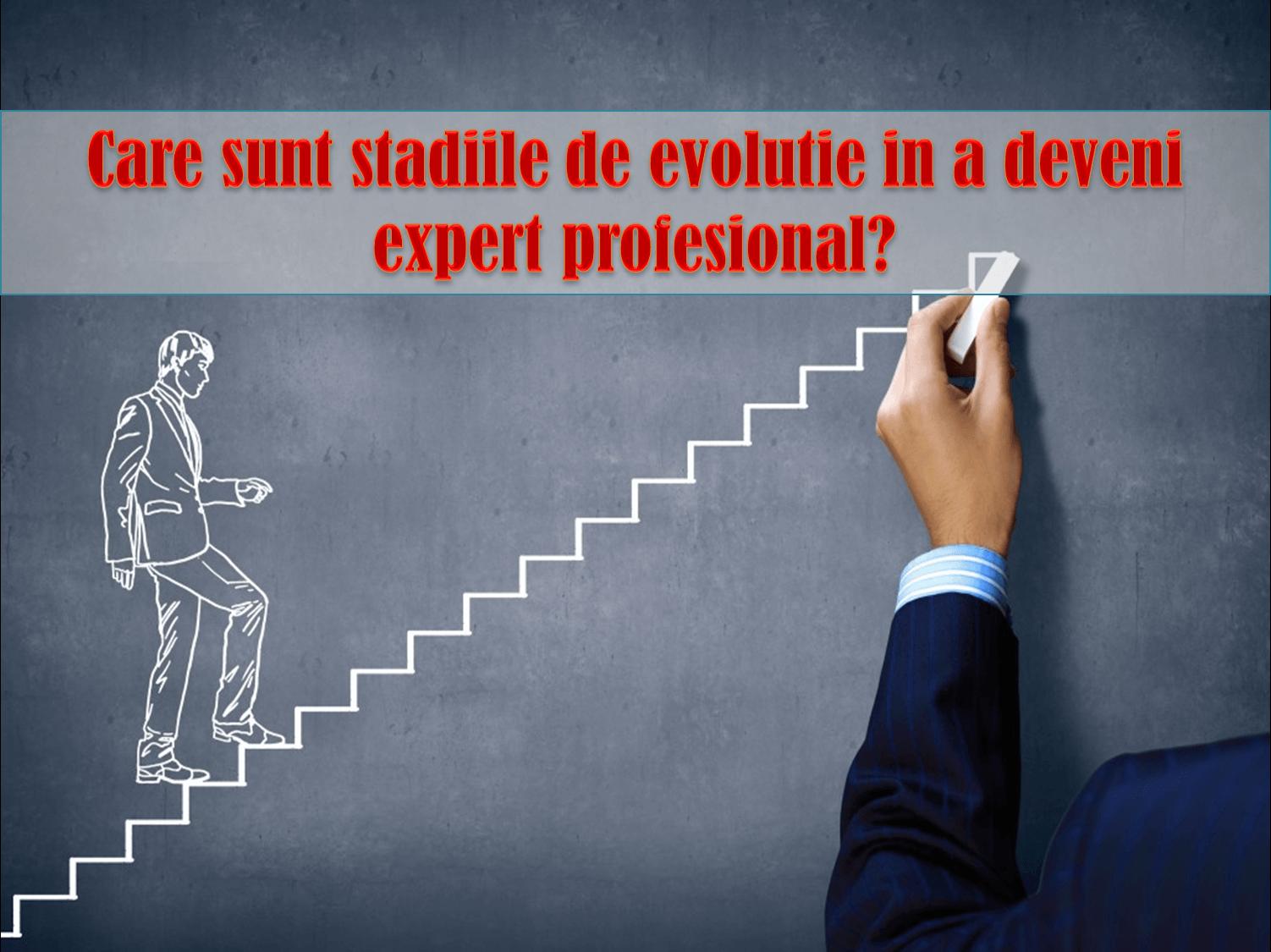 Modelul Dreyfus; competente profesionale; dezvoltarea abilitatilor individuale