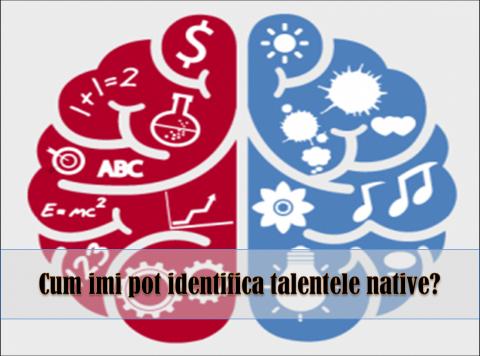 TIPURILE DE PERSONALITATE BENZIGER – folosirea talentelor native